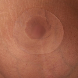 "Scar Fx 3"" Breast Areola Silicone Circles (Pair) w/Self Adhesive Side"