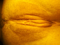 does my vagina look normal?